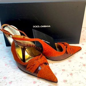 Ayers Dolce & Gabbans Sling Back Pointed Shoes